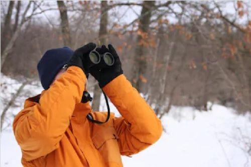prismáticos para observación de pájaros